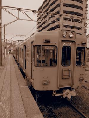 P8048378