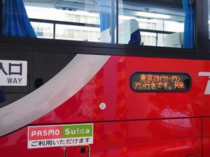 Pa130735s
