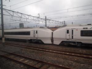 P5026290