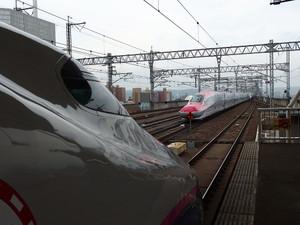 P7060674s