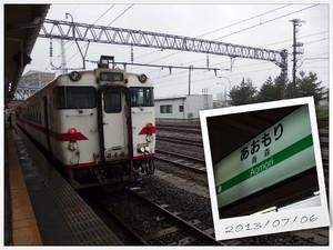 P7060863s