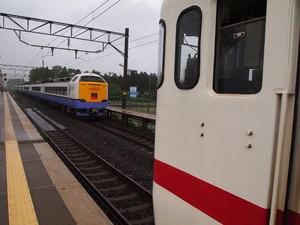 P7067919s