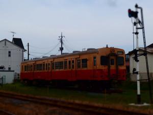 P8172544s