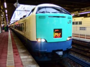 P1261302s