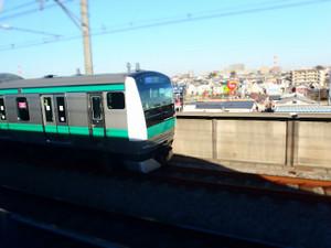 P1271784s