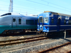 P3163477s