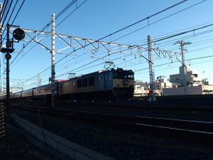 P3153269s