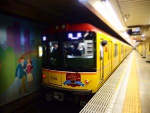 P4035145s