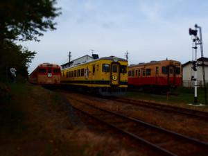 P8172558s