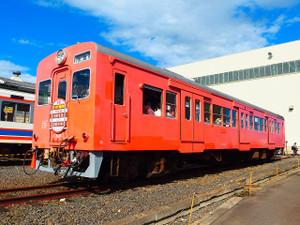 Pb034439s