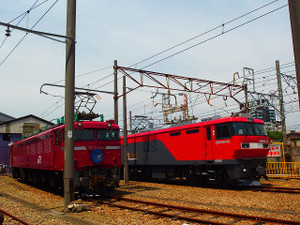 P5232598