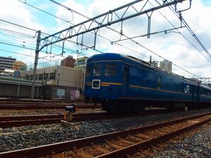 P8234591