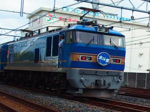 P8234607a