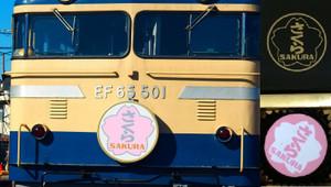 Pb154956s