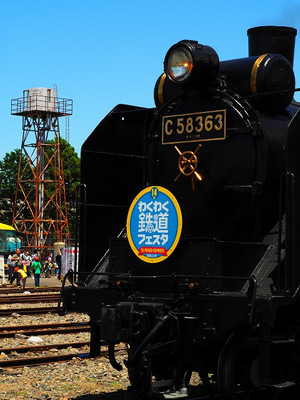 P5192964